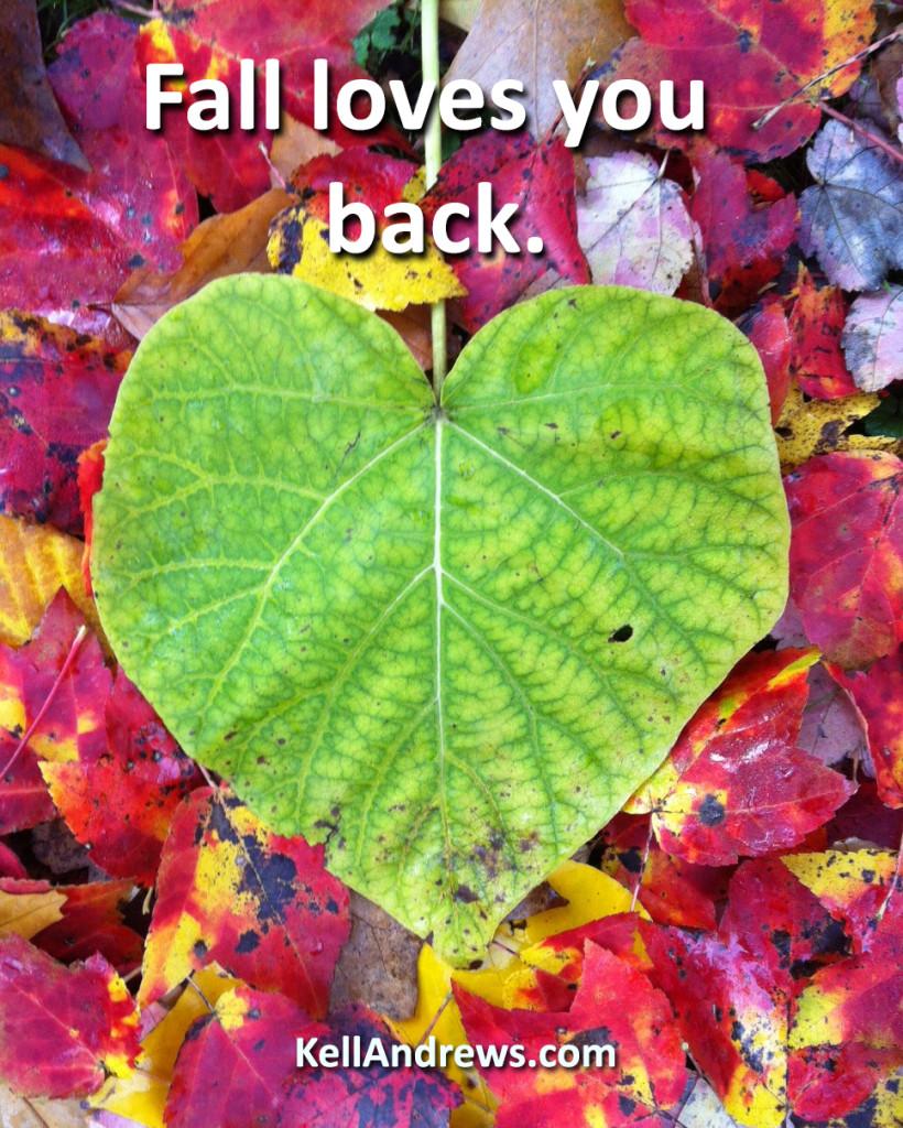Fall loves you back
